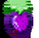 Fruit purple.png