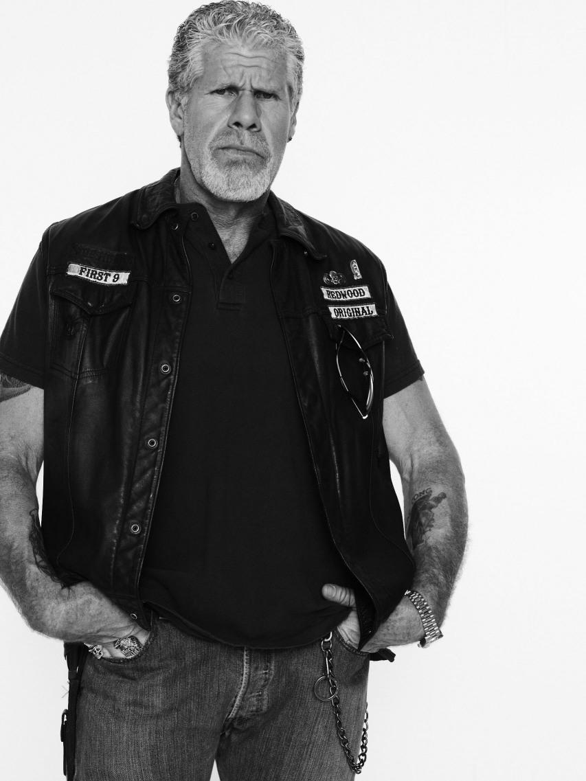 Clay Sons Of Anarchy