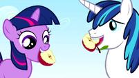 Twilight Sparkle and Shining Armor eating an apple S2E25