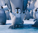 Lucia33/happy feet two