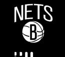 Brooklyn Nets (2013)