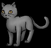 Warrior Cats Rosenblatt