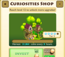 Curiosities Shop