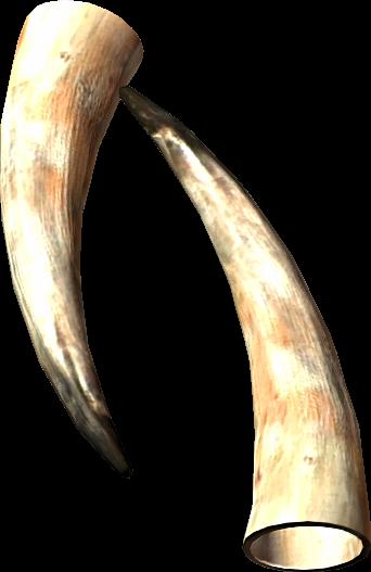 Goat Horns The Elder Scrolls Wiki