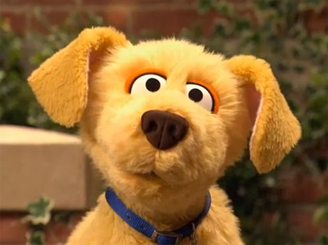 Brandeis Muppet Wiki