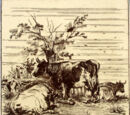 Farm Animals - Minton Hollins