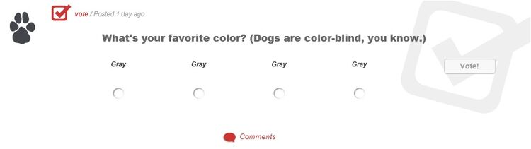 What's your favorite color? (Dogs are color-blind, you know.)