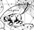 Constelação de Ursa Menor