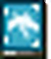 Naga FE13 Icon.png