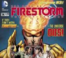 Fury of Firestorm: The Nuclear Men Vol 1 14