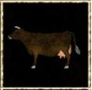 Brown Cow.jpg