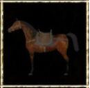 Bay Desert Horse.jpg