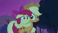 Applejack notices Apple Bloom on her back S3E06