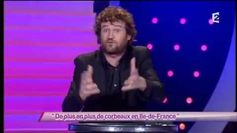 De plus en plus de corbeaux en Ile-de-France
