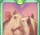 Gerbil Card