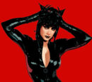 Catwoman Vol 3 70/Images