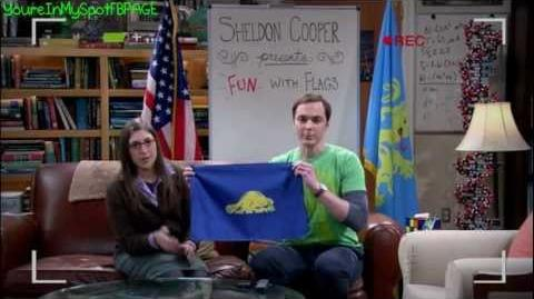 Fun with Flags - The Big Bang Theory