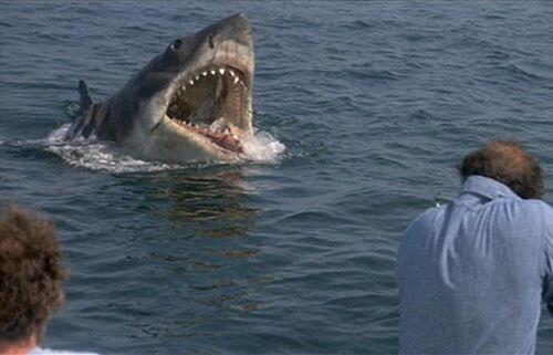 The Shark - Animal Villains Wiki
