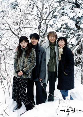 winter-sonata capitulos completos