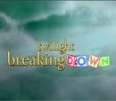 Twilight: Breaking Down