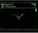 Pteranodon (Archivo)
