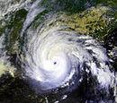 2008 Atlantic Hurricane Season (Jackson's Edition)