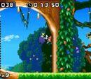 Localizaciones de Sonic Rush