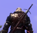 Objetos épicos de The Witcher 2