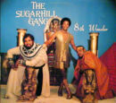 8th Wonder (The Sugarhill Gang album)
