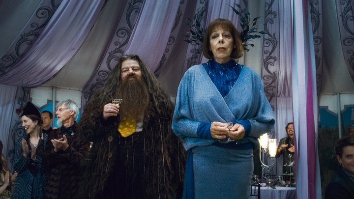 http://img2.wikia.nocookie.net/__cb20130316150317/harrypotter/pl/images/b/bc/Rubeus_Hagrid_Olympe_Maxime_D_H_Wedding_1.jpeg