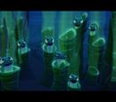 Gąbki morskie