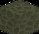 Dark End Stone (Block)