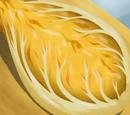 Nappa Cheese Cabbage