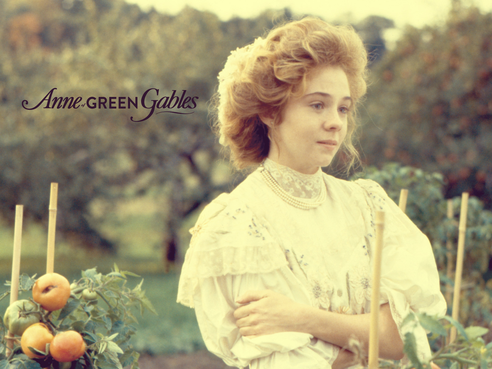 anne of green gables Free kindle book and epub digitized and proofread by project gutenberg.