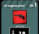 .22 Magnum Pistol