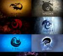 Dragon Classes