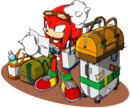 Sonic Channel - Knuckles the Echidna 2013.png