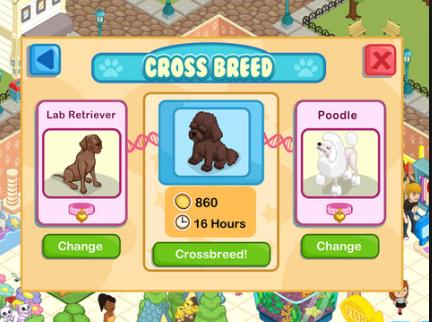Bullmastiff Pet Shop Story Png Pet Shop Story Wiki