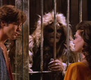 Duell der Zauberinnen (Episode)