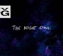 Gece Kuşu