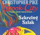 Spook City