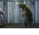 El oso y la doncella (serie)