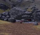 Bear Inhabited Mine