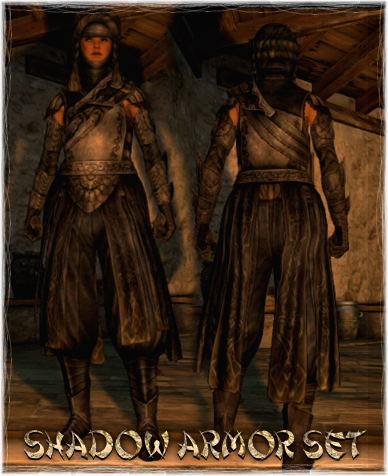 http://img2.wikia.nocookie.net/__cb20130520164258/dragonsdogma/images/6/69/Armour_Set_Shadow_Armor.png