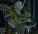 Druidzi