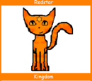 Redstar (Up for Adoption)
