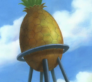 Pineapple Water Tower