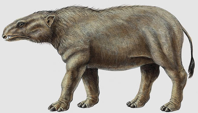 Phosphatherium - Dinopedia - the free dinosaur encyclopedia