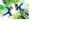 Capcom506.jpg