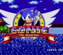 Sonic the Hedgehog's Absolutely Gross Adventures